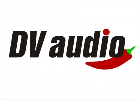 Весеннее поступление радио микрофонов DV audio!!!