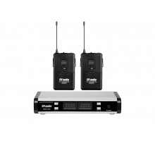 Радіосистема DV audio BGX-224 Dual з гарнітурами