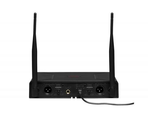 Радіосистема DV audio BGX-24 комбінована (з ручним та поясним передавачами)