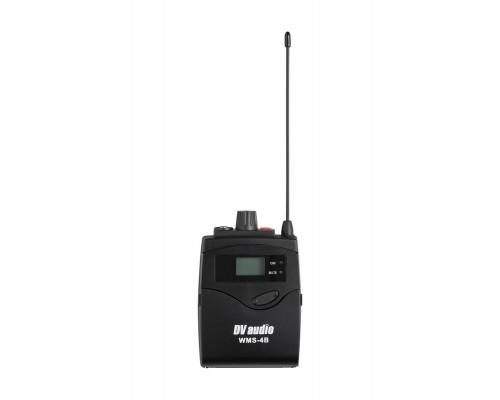 Радіосистема DV audio WMS-24B з петличний мікрофонами
